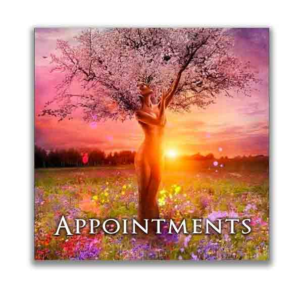 appointments-bagua