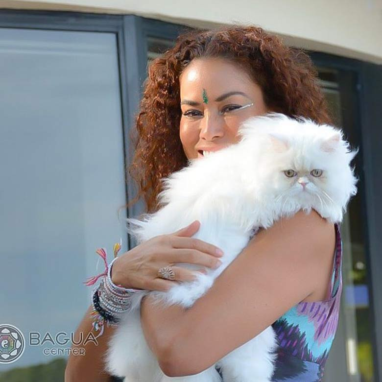 energy-healing-with-pets-miami